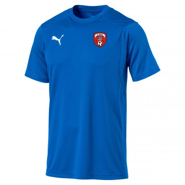 Liga Training Jersey blau (nur für Torhüter)