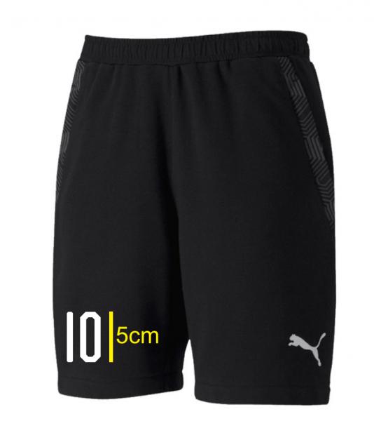 team FINAL 21 Casuals Shorts